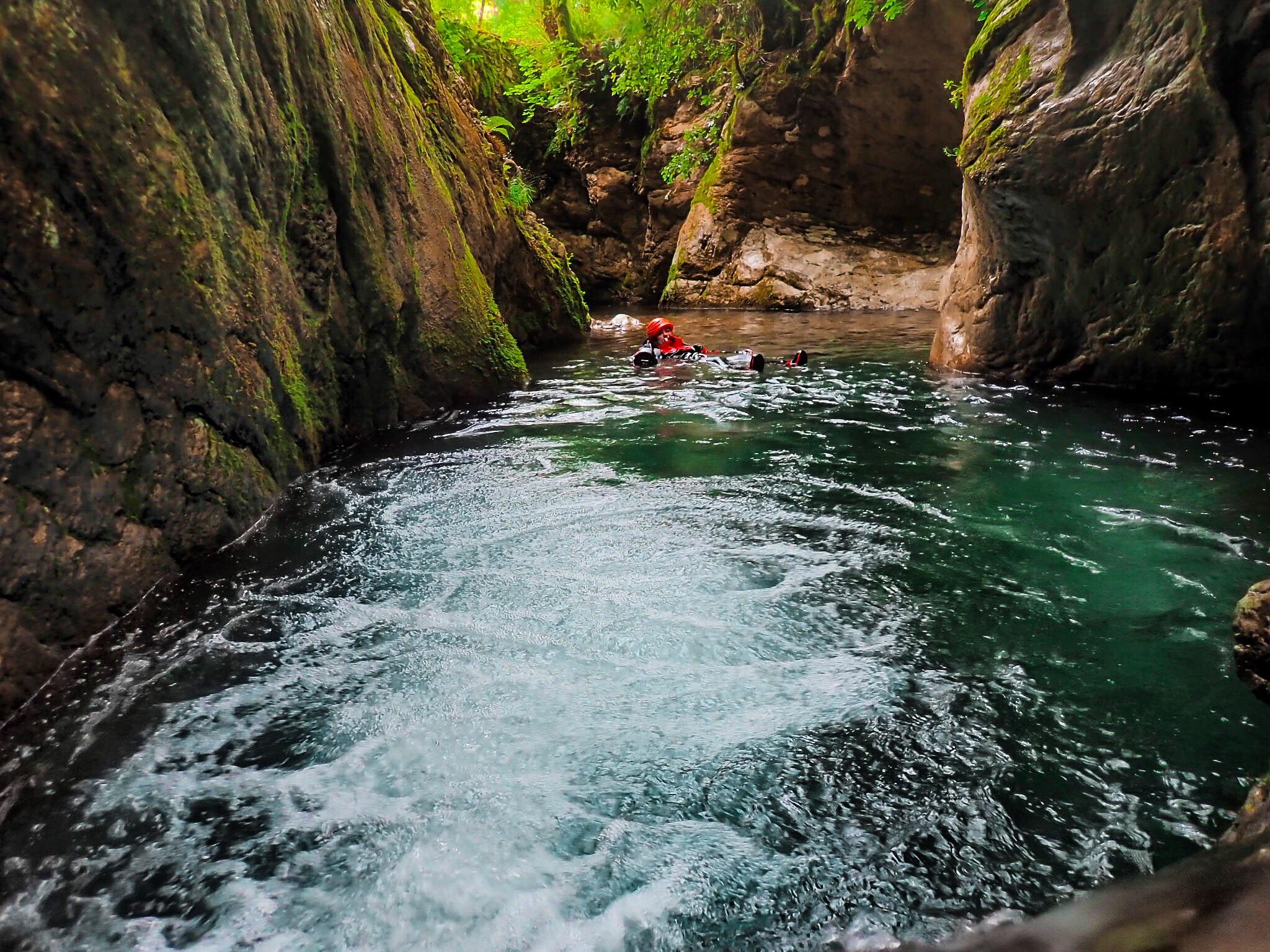 Rio selvano